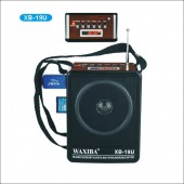Radio MP3 intrare USB si card WAXIBA XB-19U